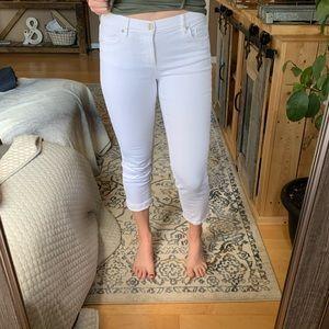 LOFT modern crop jeans!